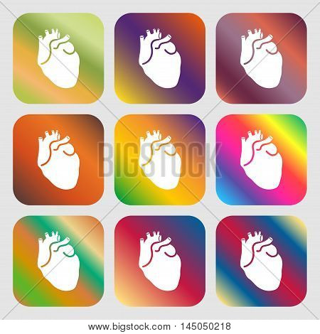 Human Heart Sign Icon . Nine Buttons With Bright Gradients For Beautiful Design. Vector