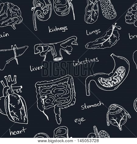 Human internals doodle seamless pattern. Vintage illustration for identity, design, decoration, packages product and interior decorating