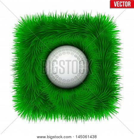 Icon Hockey ball on green grass. Sport symbol. Vector Illustration isolated on white background.