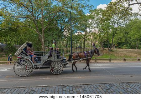 Central Park NY US -- August 31 2016. A ride with a horse and carriage through Central Park on a summer afternoon. Editorial Use Only.