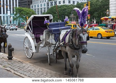 New York NY US -- August 31 2016. A riderless horse and carriage resting on Central Park South in New York city. Editorial Use Only.