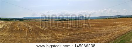 Cornfield Harvested Rural Vision Field Panorama View