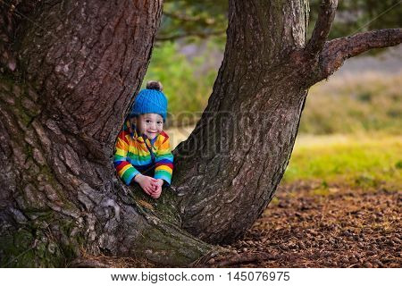 Little boy hiding behind big tree. Happy children playing in beautiful autumn park on cold sunny fall day. Kids in warm jackets play with golden leaves.
