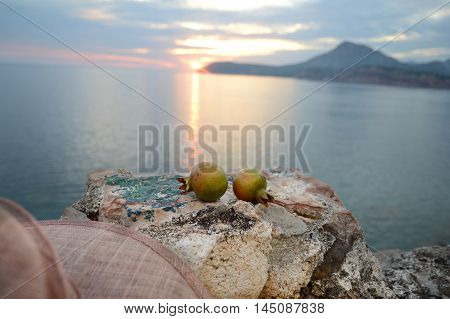 Pomegranate on stone. Seascapes and pomegranate and hat.