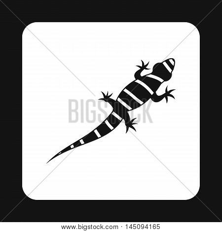 Striped chameleon icon in simple style isolated on white background. Reptiles symbol