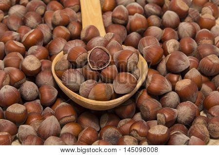 hazelnut energy healthy life crusted food healthful organic nut heart health