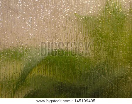 Background with green leaves viewed through multicolored textured and translucent glass.