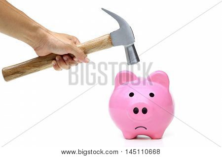 A sad pink piggy bank is about to be hit by a hammer