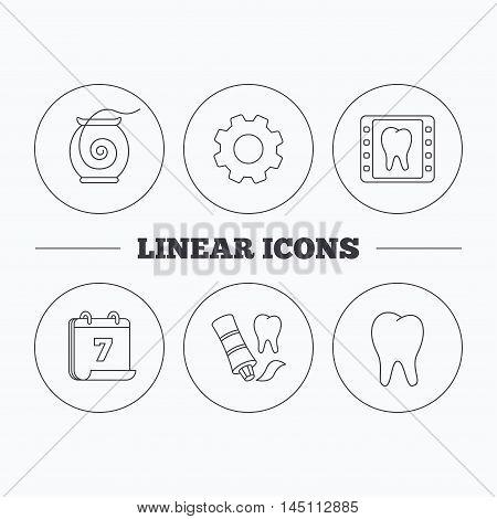 Dental floss, tooth and toothpaste icons. Dental X-ray linear sign. Flat cogwheel and calendar symbols. Linear icons in circle buttons. Vector