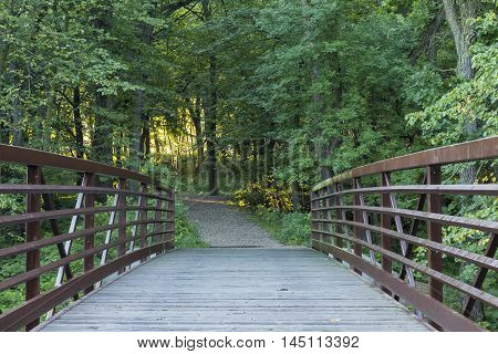A footbridge leading to the woods in the morning.