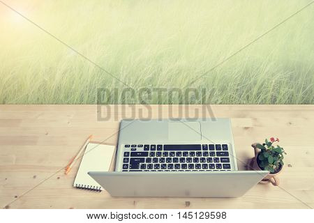 Office Desk with laptop not paper and Euphorbia milii flower on terracotta flower pot at meadow. vintage style.