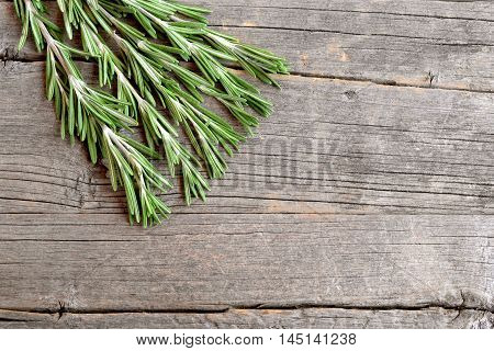 Fresh green rosemary sprigs on a kitchen board and an old wooden background with empty copy space for text. Fragrant herb used in cooking, medicine, cosmetics. Closeup