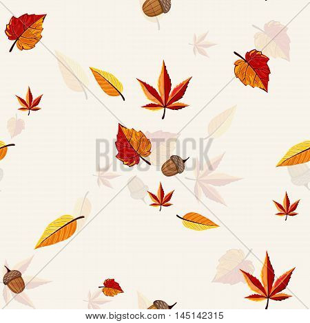 Autumn vector pattern. Hand draw autumn leaves background. Autumn leaves concept. Different autumn leaves. Abstract leaves. Autumn frame. Autumn leaves vector illustration. Autumn leaves fall.