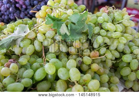 Green-yellow grapes for sale at city farmers market