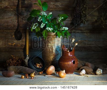 Rural still life with vegetables and branch of bird-cherry
