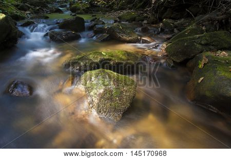 Pisgah National Forest stream running with daylight in North Carolina