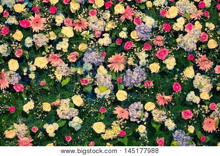 Background of Beautiful flower for wedding decoration