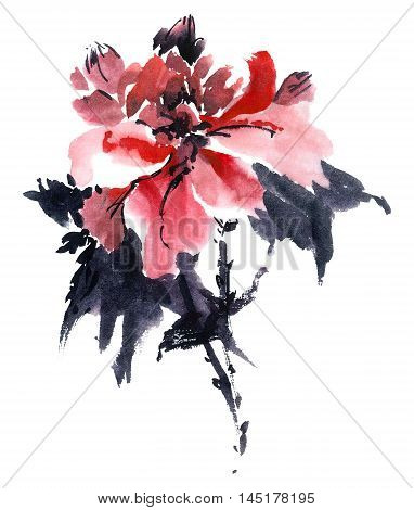 Watercolor and ink illustration of blossom flower. Gohua sumi-e u-sin painting.