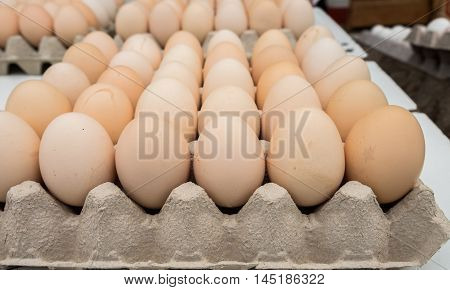 fresh brown eggs in tray sold at local farm market