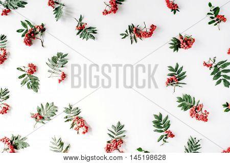 Creative arrangement made of rowan. frame flat lay top view. autumn wallpaper