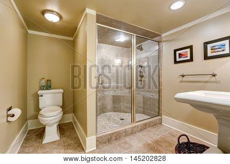 Elegant Beige Bathroom Interior With Walk-in Shower