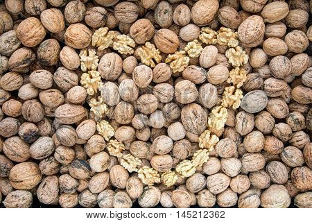 Detail of the walnuts and nut kernels