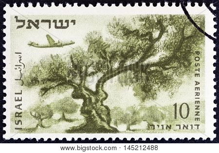 ISRAEL - CIRCA 1953: A stamp printed in Israel shows Olive tree, circa 1953.