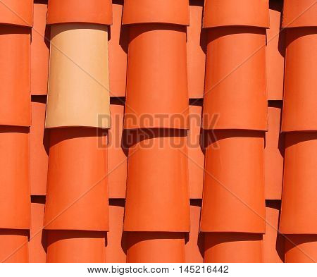 Couple of roof tiles representing uniqueness and similarity.
