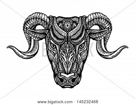 Hand-drawn head ram. Ethnic patterns. Bull or animal icon. Vector illustration