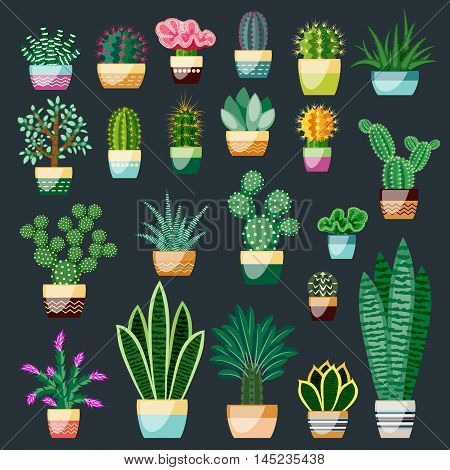Big set of cactuses and succulents in pots. Cactuses and succulents isolated on dark background. Indoor plants in a flat style. Vector illustration.