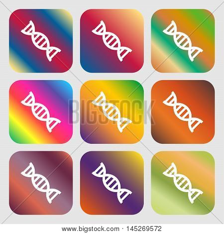 Dna Icon . Nine Buttons With Bright Gradients For Beautiful Design. Vector