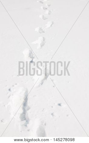 Footprint on the snow background at Antarctica
