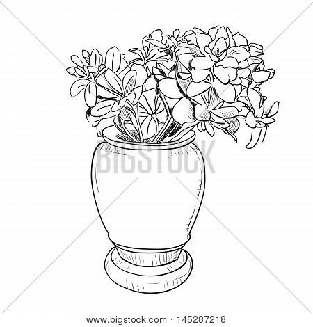 Vector drawing sketch of vase with flowers. Hand draw illustration.