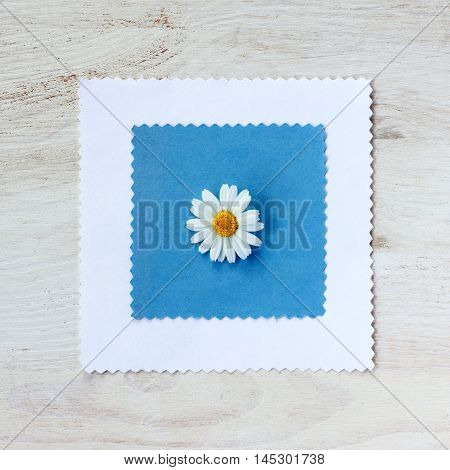 background with chamomile flower lying on the decorative top view of the substrate / pattern with a single daisy flower