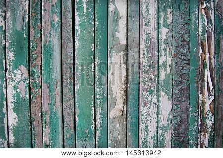 wooden planks, green, white, cracks and scratches of paint on palisade background