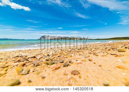 orange pebble in Capo Coda Cavallo shore Sardinia