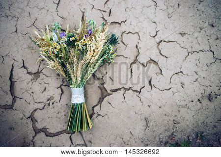 bouquet of flowers on ground covered with crust of dried mud