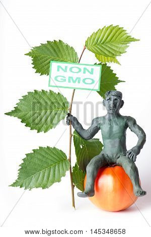 Gmo Concept Danger Figure Of A Man