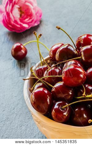 Fresh cherries in white vintage bowl on black stone background and pink rose. Selective focus.