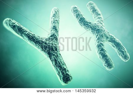 Y Chromosome in the foreground, a scientific concept. 3d illustration.