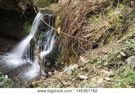 woodland waterfall in Fife during Autumn walk