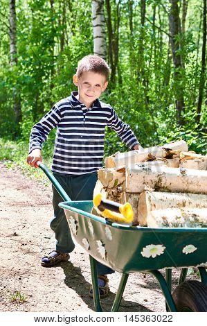 Little Boy Carries Firewood From Forest