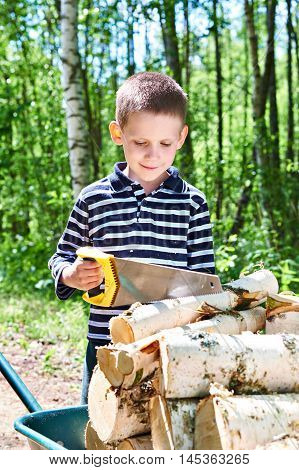 Little Boy With Wheelbarrow Sawing Wood In Forest
