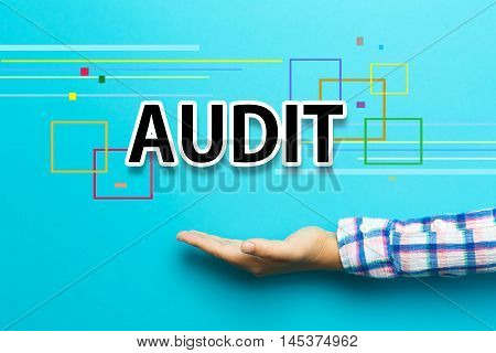 Audit Concept With Hand