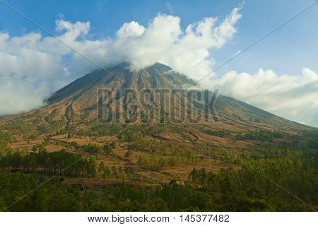 Dry nature on the Mountains in central Flores, Indonesia