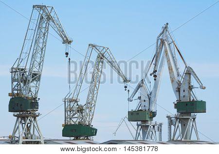 Four Giant Shipyard Cranes Against Blue Sky
