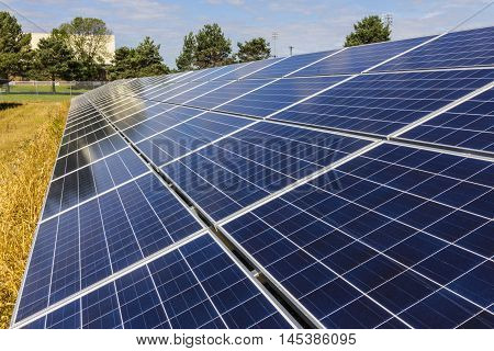 Solar Panel Farm. Corn Fields are Being Converted into Green Energy Areas Using Photovoltaic Cells XII