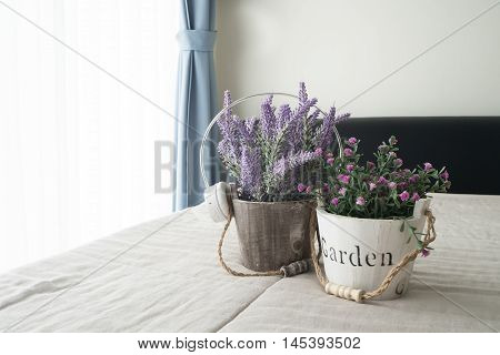 The bed with purple lavender flower and pink rose flower on flowerpot sunlight from glass of windows in bedroom.