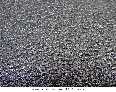 Monotone texture in cold colors of the leather.