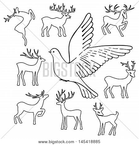 Soaring dove & deers vector illustration isolated on white background
